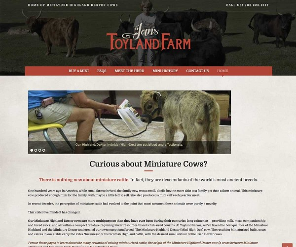 Web Site Design for Miniature Cows in Rusk, Texas